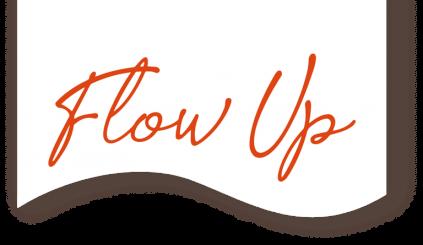 LOGO FLOW UP PRINCIPAL - RVB WEB
